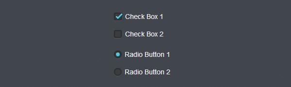 Стилизация элементов checkbox и radio button на css3